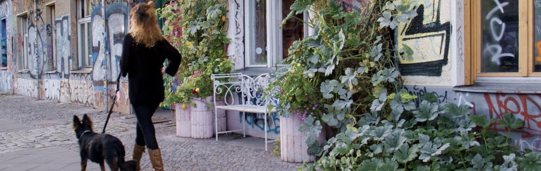 Berlin 10245 - Friedrichshain - Revaler Straße - 130914-004